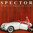 Spector have revealed the details of their debut album. The London indie band will release 'Enjoy It While It Lasts' on August 13 through Fiction Records. Mixing duties were carried...